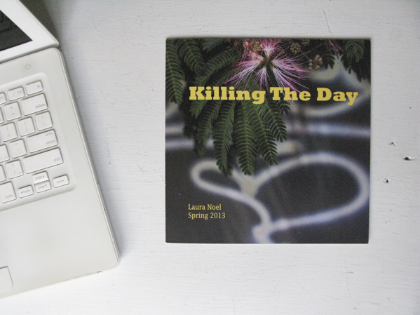 Killing The Day, Spring 2013